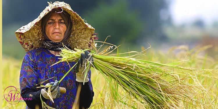 استثمار زنان کشاورز در ایران