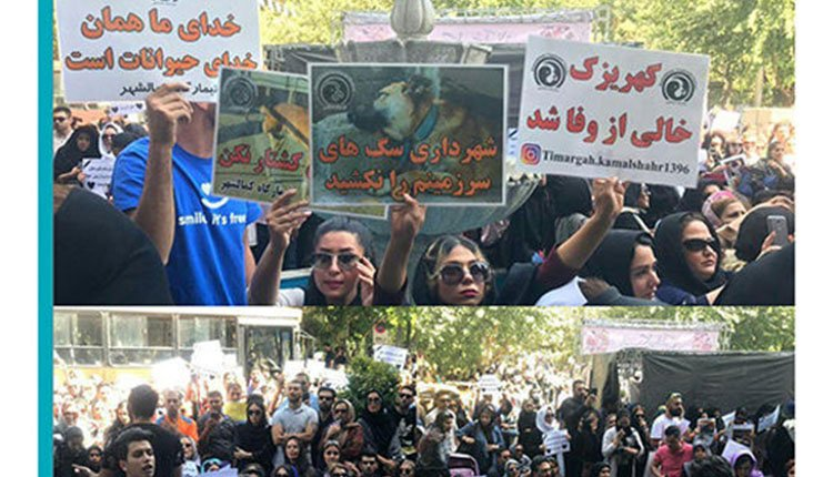 Protests-by-different-strata-in-various-cities-across-Iran-2