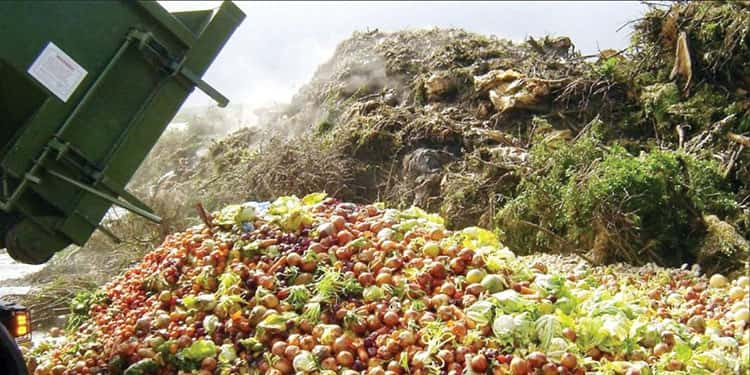 30% of Iran's agricultural products wasted every year