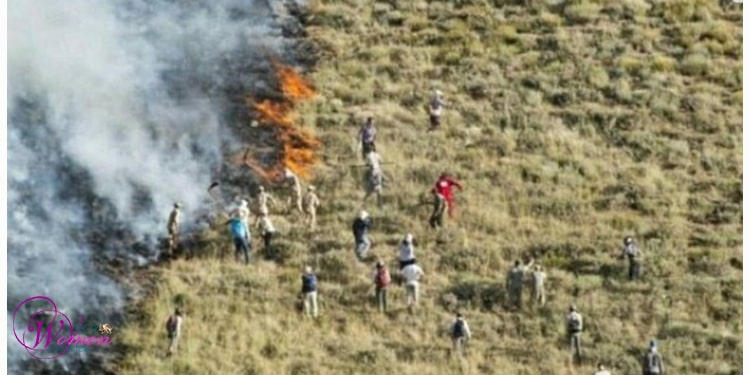 In the absence of sprinkler helicopters, locals try to put off the fire with empty hands